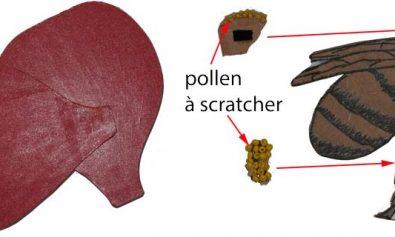 Expliquer la pollinisation aux enfants